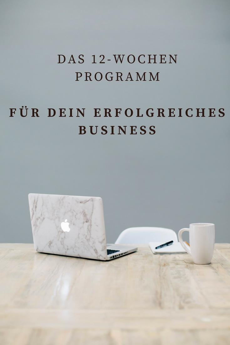 Dein erfolgreiches Business - 12-Wochen Programm